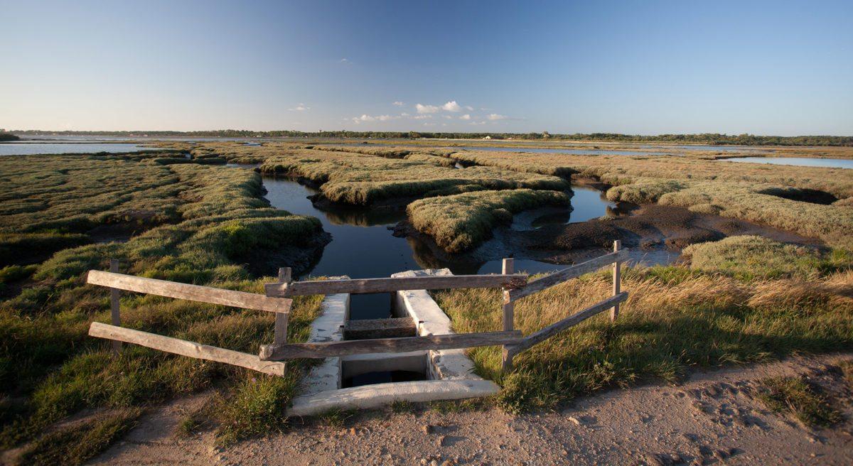 C ur du bassin bassin d arcachon for Piscine arcachon horaires
