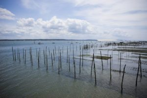 Parc à huîtres sur le Bassin d'Arcachon