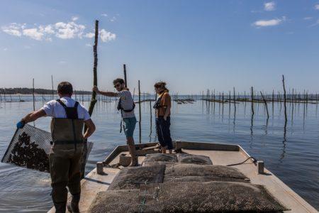 Sortie sur le Bassin d'Arcachon avec un ostréiculteur