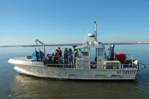 Sortie sur un bateau de pêche au Bassin d'Arcachon