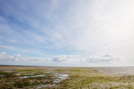 Balade et pêche à pied sur le Bassin d'Arcachon à l'automne