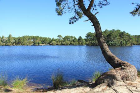 Lac de la Magdeleine au Bassin d'Arcachon