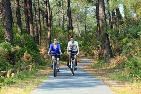 Balade à vélo en forêt au Bassin d'Arcachon