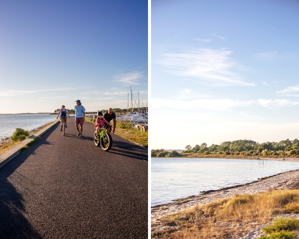 L'automne sur le port d'Andernos
